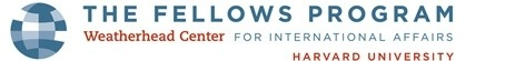 The Fellows Program